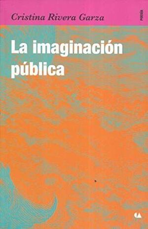 LA IMAGINACION PUBLICA