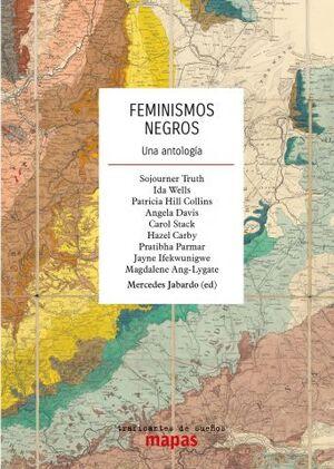 FEMINISMOS NEGROS