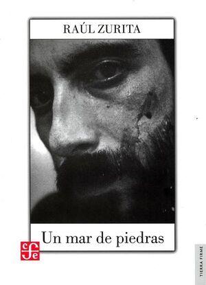UN MAR DE PIEDRAS / RAÚL ZURITA ; EDICIÓN DE HÉCTOR HERNÁNDEZ MONTECINOS.